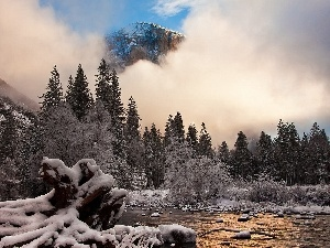 Fog, trees, viewes, Mountains, winter, River