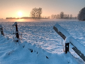 snow, Meadow, viewes, dawn, trees, fence