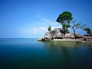sea, trees, viewes, rocks