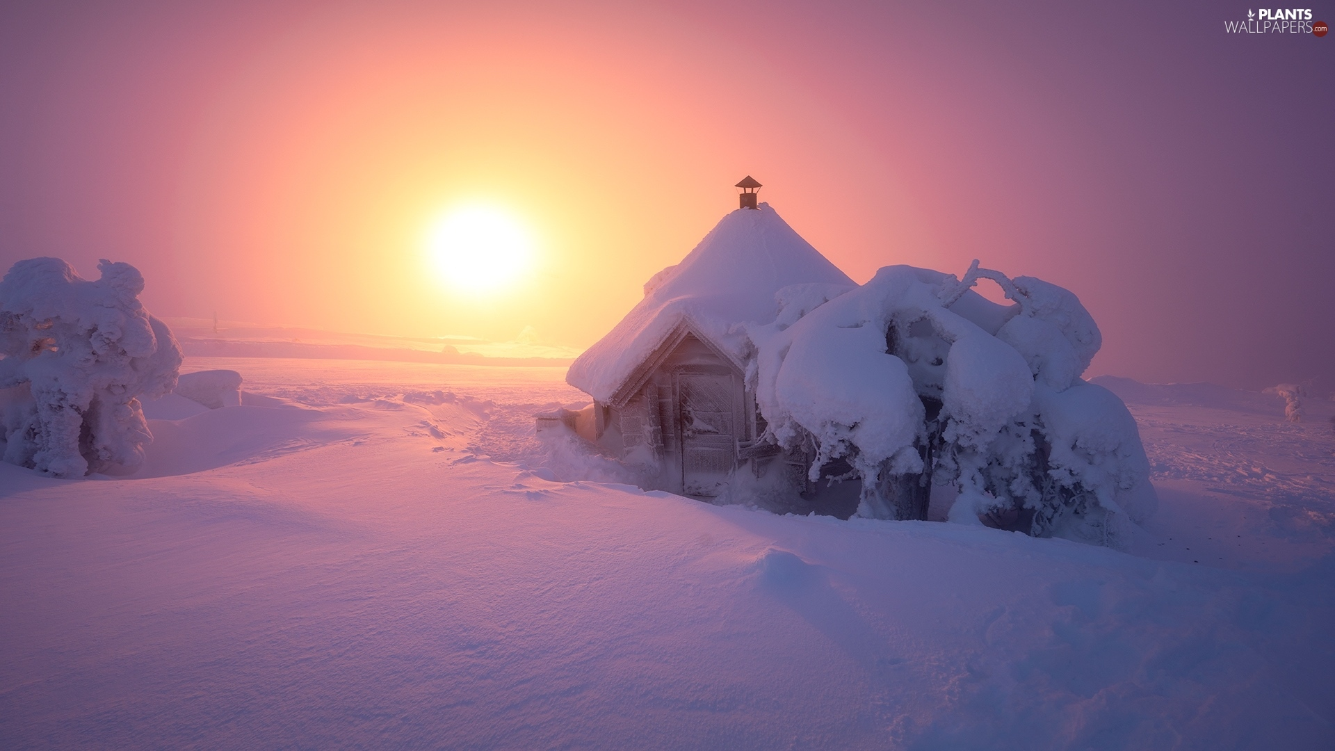 A snow-covered, cottage, Sunrise, house, viewes, snow, winter, trees