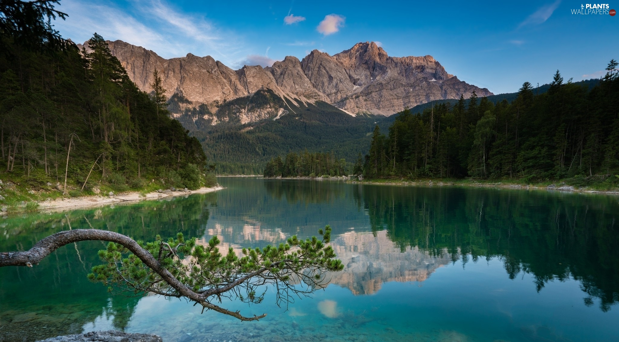 trees, Mountains, reflection, branch, viewes, lake