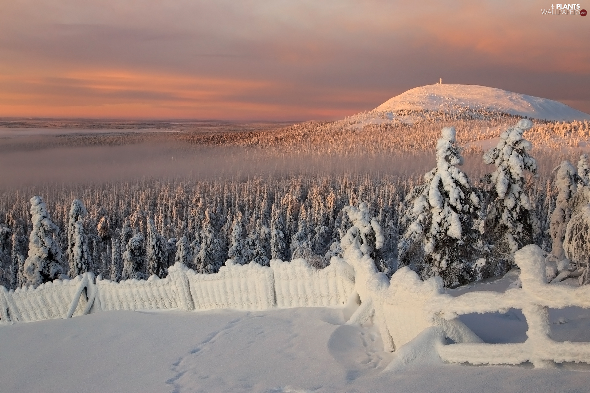 Snowy, winter, viewes, fence, trees, Mountains