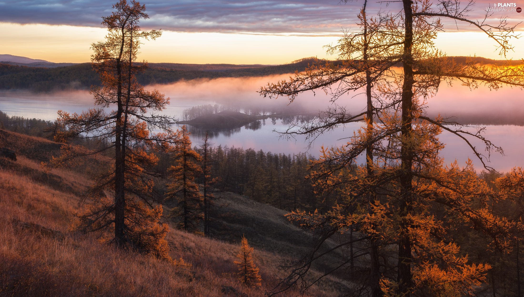 lake, trees, Fog, viewes, clouds, Mountains, autumn, grass
