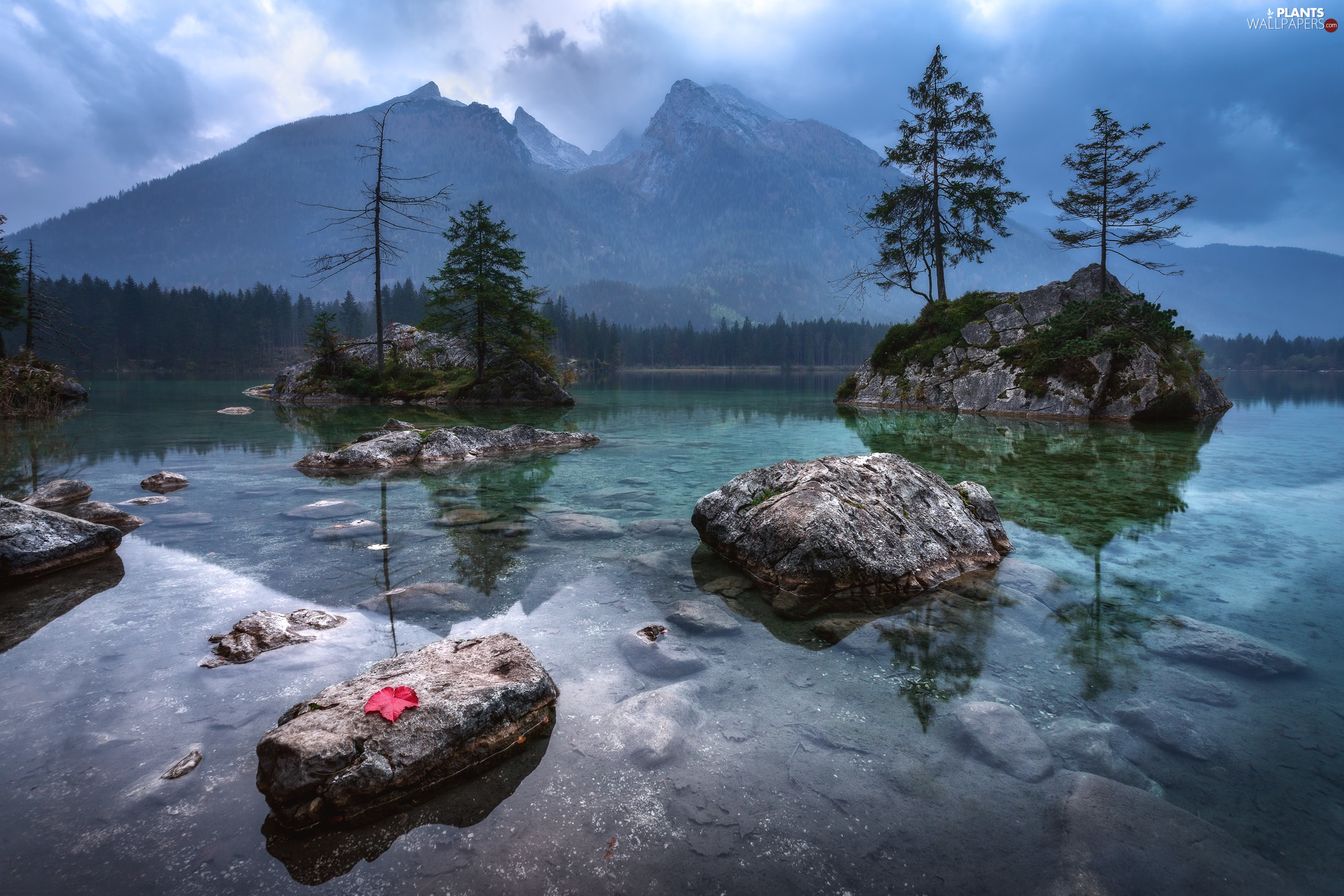 trees, Mountains, Stones, Bavaria, Red, Lake Hintersee, rocks, Germany, viewes, leaf