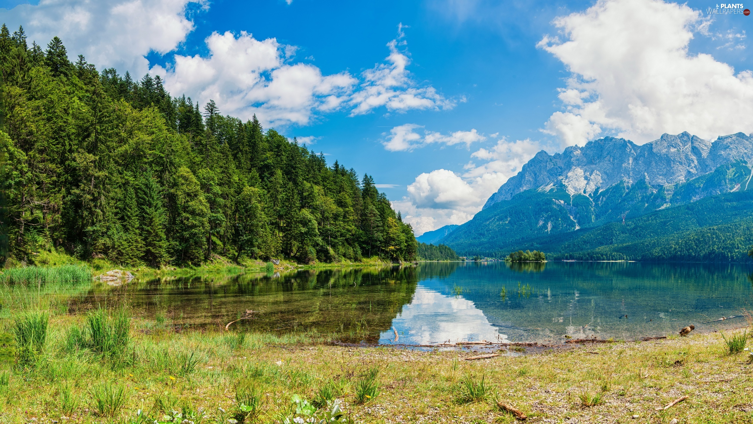 trees, reflection, forest, lake, Mountains, viewes, clouds