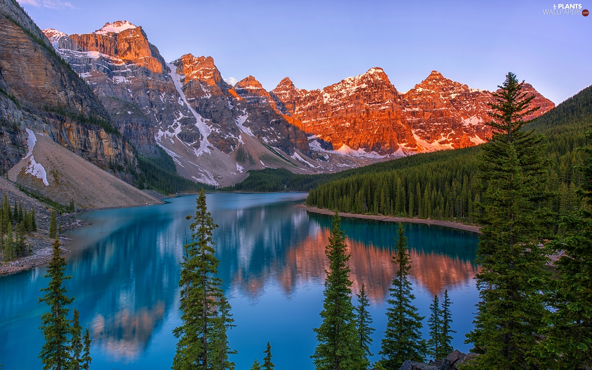 Mountains, Province of Alberta, trees, Banff National Park, Canada, Lake Moraine, viewes