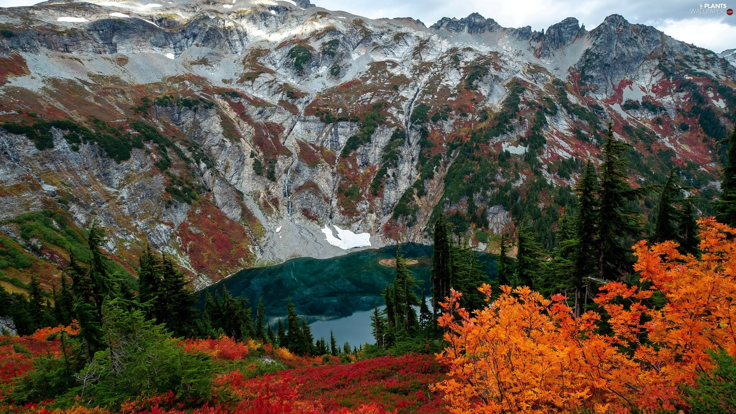 trees, viewes, The United States, autumn, Washington State, lake, Mountains, North Cascades National Park