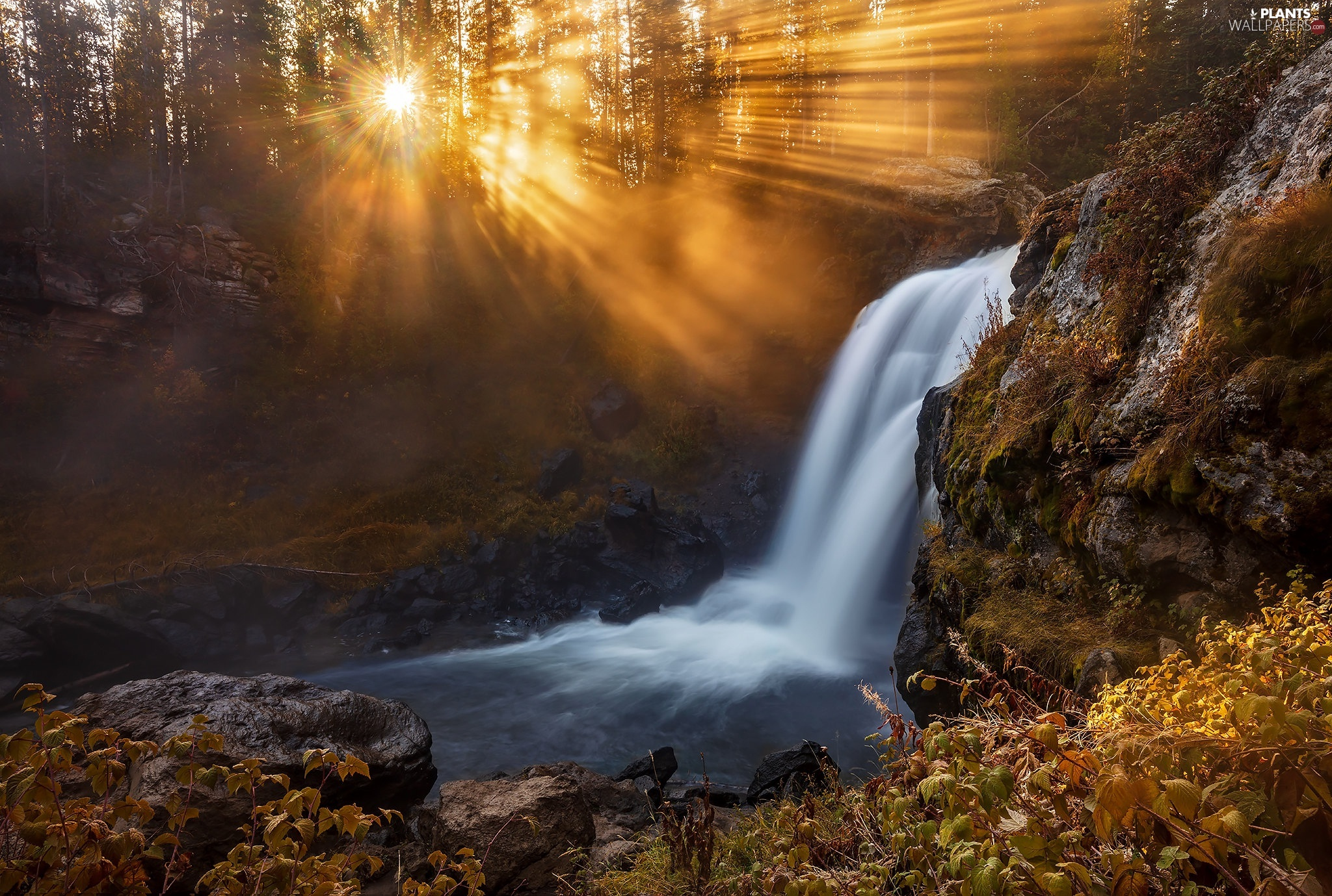Rocks, waterfall, viewes, rays of the Sun, trees, River
