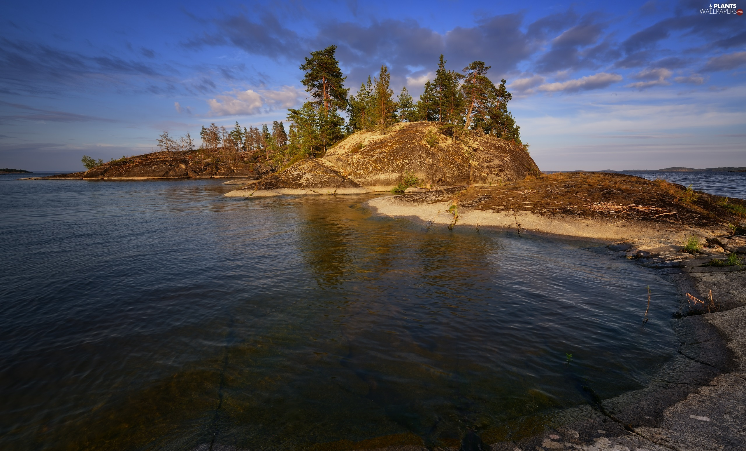 trees, Islet, Karelia, rocks, Lake Ladoga, viewes, Russia