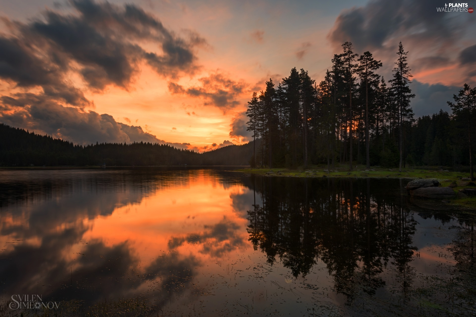 viewes, lake, Great Sunsets, clouds, forest, trees