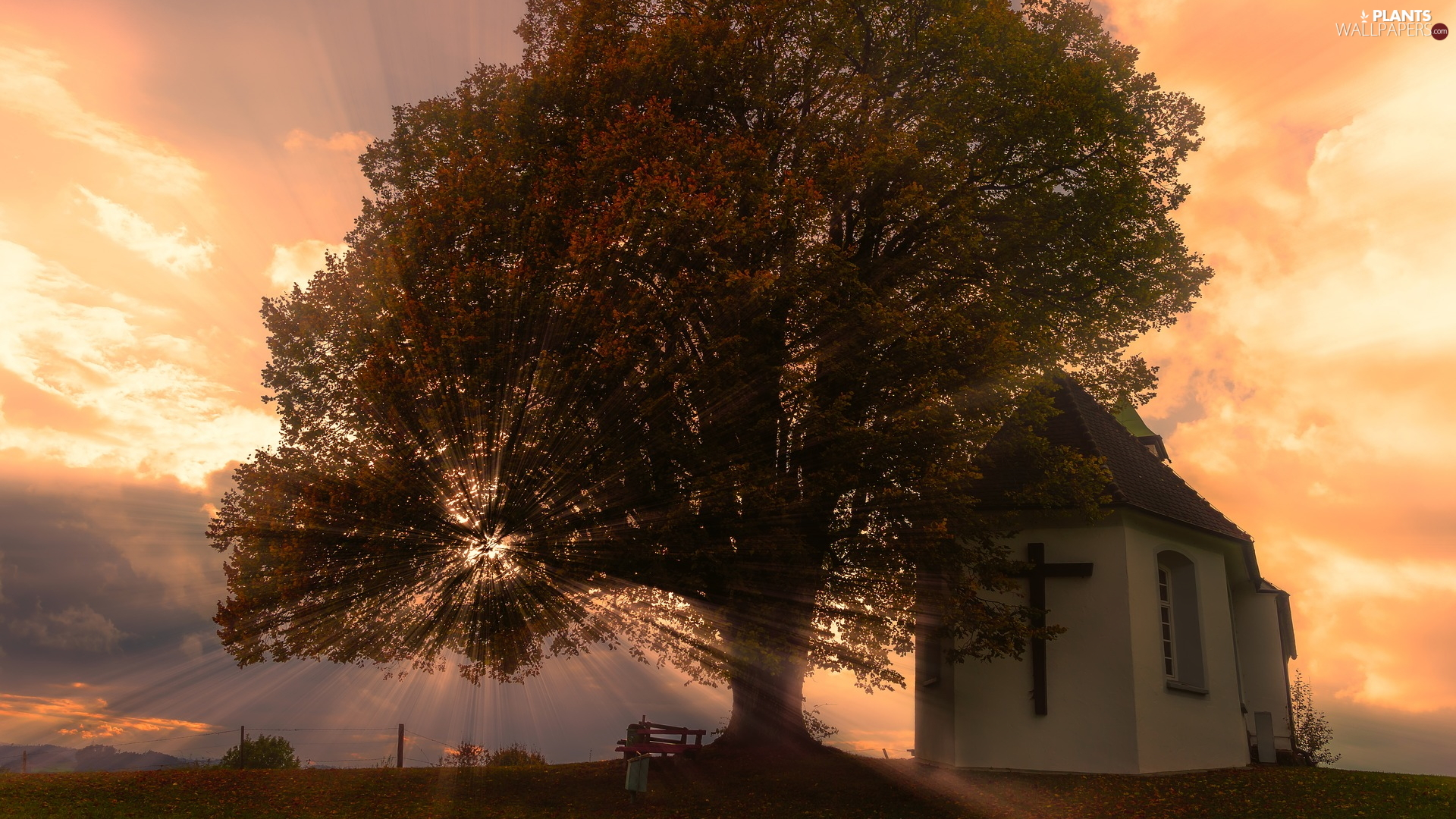 chapel, church, light breaking through sky, Bench, trees