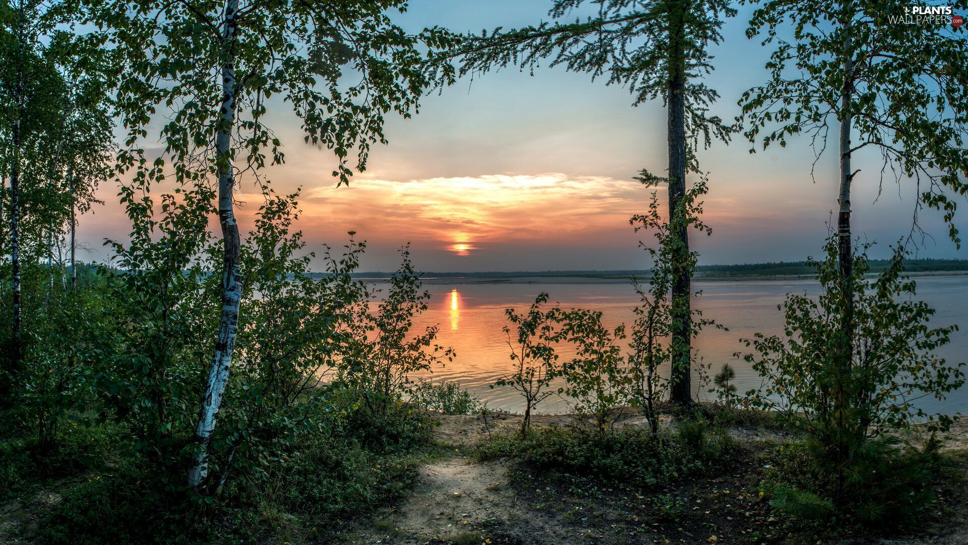 Sky, Great Sunsets, viewes, lake, trees