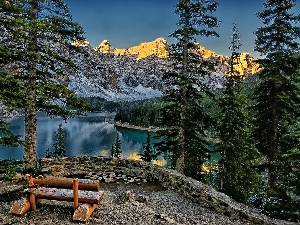 Mountains, Spruces, Bench, lake
