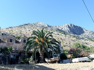 Mountains, Palm, Coartia, house