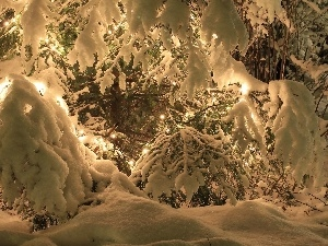 lights, christmas tree, snow