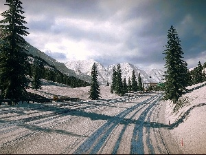 winter, Mountains, Spruces, Way