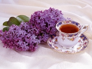 Violet, cup, tea, without
