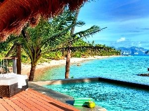 terrace, Palm, Beaches, Pool, sea
