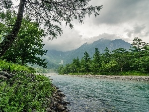 Mountains, trees, viewes, River