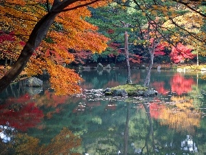 viewes, reflection, lake, trees, autumn