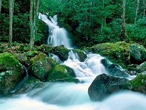 forest, mosses, waterfall, boulders