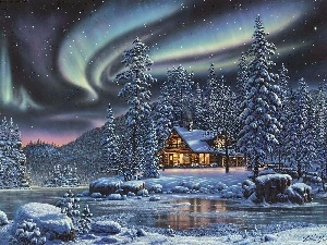 winter, Art, dawn, Home, Spruces