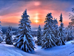 Great Sunsets, Christmas, winter